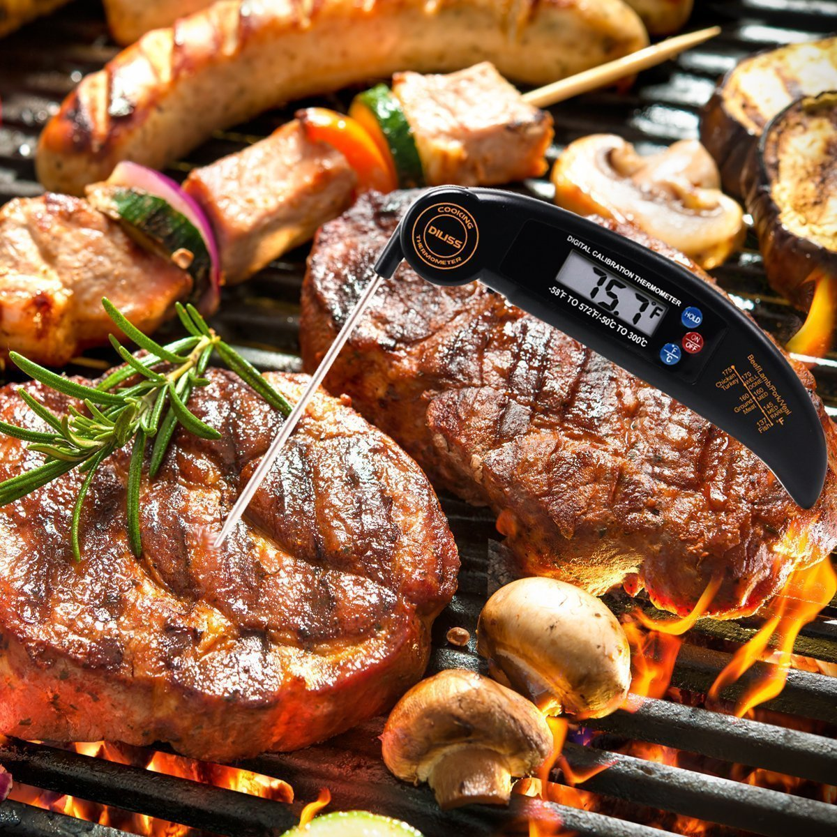 Diliss Instant Read Meat Thermometer The Grilling Life