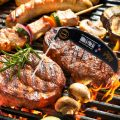 DILISS Instant Read Meat Thermometer
