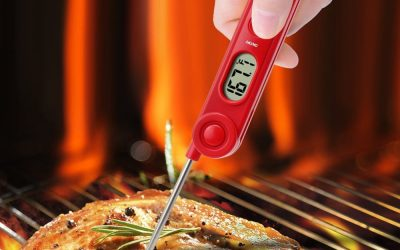 Thermo Pro Meat Thermometer Review And Rating – Highly Reviewed And Great Custumer Service