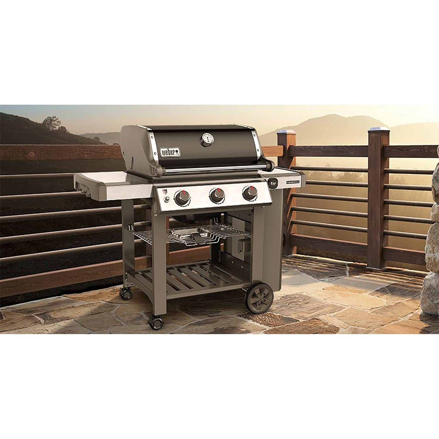 weber 61010001 genesis ii e 310 liquid propane grill the grilling life. Black Bedroom Furniture Sets. Home Design Ideas