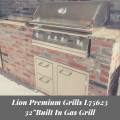 Lion Premium Grills L75623 32 Inch Built In Gas Grill Review Blog