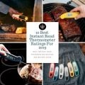 10 Best Instant Read Thermometer Ratings, The Grilling Life
